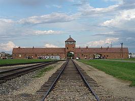 Tot aan de deuren van de gaskamers werkten in Auschwitz Nederlandse SS'ers