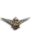 Vliegenierswing in Zilver