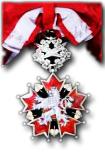 Tsjechoslovaakse Orde van de Witte Leeuw, 1e Klasse