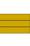 Combat Injury Badge