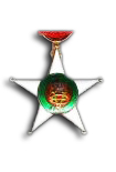 Colonial Order of the Star of Italy - Knight