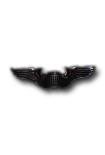 Piloten wing