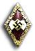 Goldenes Hitlerjugend Ehrenabzeichen