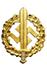 Goldenes SA-Sportabzeichen
