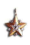 Marshal's Star