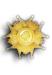Grand Croix de l' Ordre National de la Legion d'Honneur