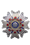 Order of the Sacred Treasure, 1st Class