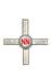 Borstkruis van de Stichting Vriendenkring van oud-Natzweilers 1940-1945