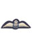 RAAF Pilot Badge