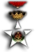 Colonial Order of the Star of Italy - Ufficiale
