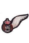 RAF Wireless Operator Air Gunner Badge