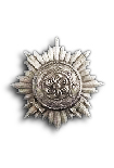 Ostvolk Medal 1st Class in Silver with Swords