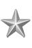 Silver Citation Star