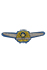 Army Air Force Pilot Badge