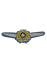 Army Air Force Pilot Badge