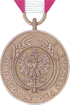 Long Service Medal 10 years