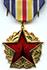 Médaille des blessés de guerre