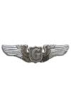 Wing Zweefvliegtuig piloot