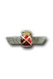 Nationalist Pilots Badge