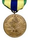 Mexico Dienst Medaille