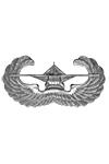 Zweevliegtuig bemanning badge