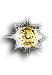 Grootkruis in de Huisorde van Oranje (HO.1)