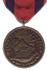 Nicaraguan Campaign Medal