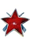Orde van de Partizanenster met geweren