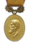 Medaille voor Standvastigheid en Trouw 1e Klasse
