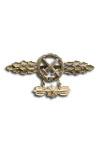 Gevechtspeld voor jachtbommenwerpers in goud met hanger