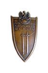 Grunwald Badge in Brons