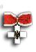 Ehrenzeichen des Deutschen Roten Kreuzes, 1.Stufe